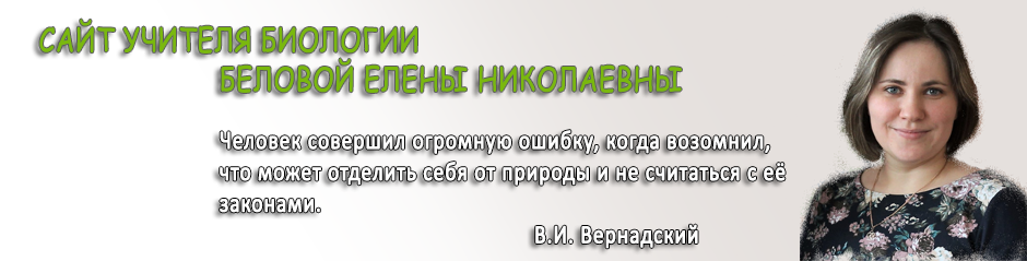 Сайт учителя Беловой Елены Николаевны